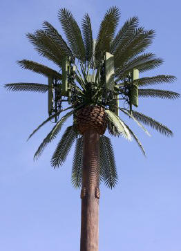 Cell phone tower rely antenna made from a palm tree